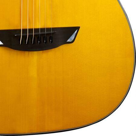 Cort Frank Gambale Signature Luxe Series