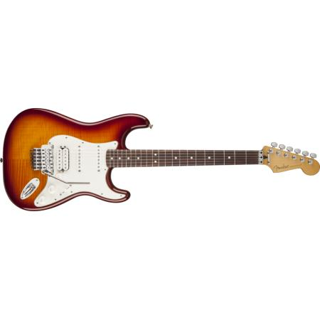 Fender Standard Stratocaster HSS Plus Top with Locking Tremolo, Rosewo