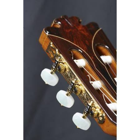 Alhambra Vilaplana Exótico Guitarra clásica