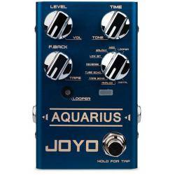 JOYO PEDAL AQUARIUS DELAY R SERIES