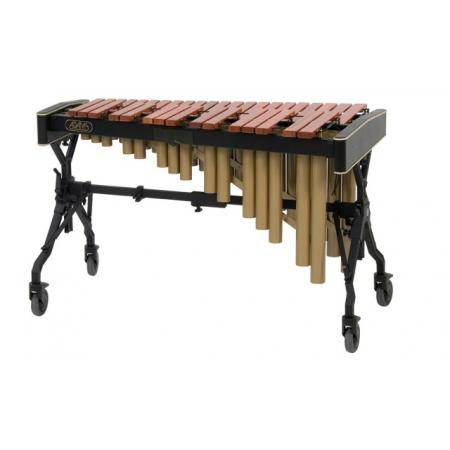 MARIMBA ACADEMY ADAMS JUNIOR