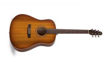 Seagull Entourage SG Guitarra Acústica
