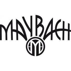 Comprar Guitarras Eléctricas Maybach